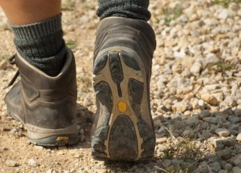 Guida naturalistica: la tua passione per l'escursionismo diventa il tuo lavoro