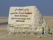 Borse di studio per l'Egitto