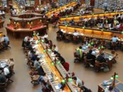 Bibliotecario: fai della tua passione per la lettura la tua professione