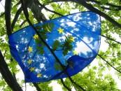 Cercare lavoro in Europa: un diritto da salvaguardare