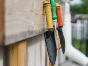 Giardiniere: lavorare all'aperto invece che in ufficio