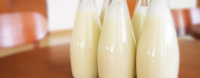 Incentivi per le piccole e medie imprese che producono latte dalla Camera di Commercio di Brescia