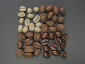 Coffee specialist da Nespresso