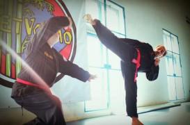 Corso di VIET VO DAO (arti marziali vietnamite)