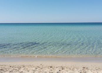 Atlantis Club cerca personale con esperienza a Montirone