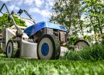 Corso gratuito di giardinaggio e manutenzione del verde