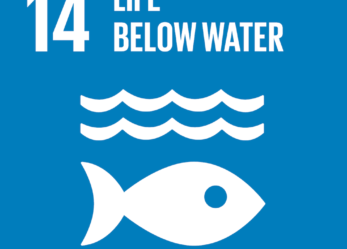 Un tema per proteggere le acque