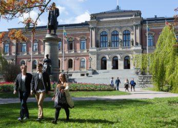 Scuola o università in Svezia