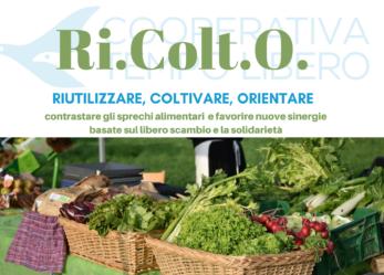 Ricolto, il primo emporio solidale di Brescia, cerca volontari e aziende che donino eccedenze