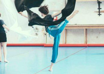 65 ballerini professionisti e coreografi a Vienna
