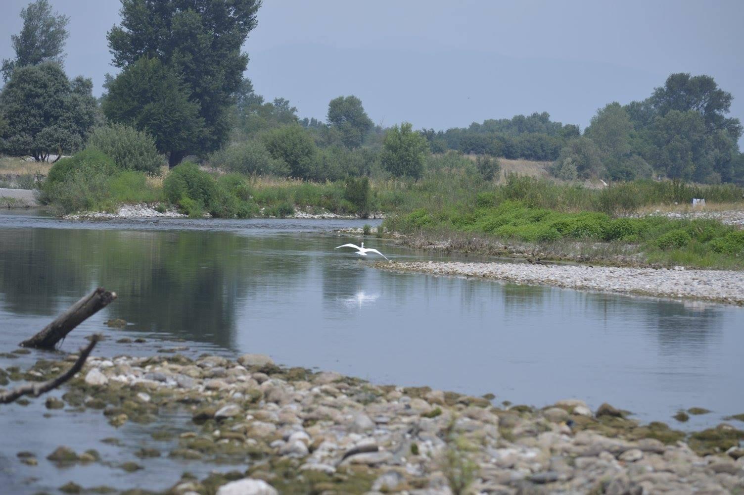 fiume chiese nei pressi di carpenedolo