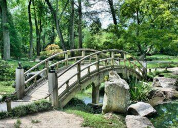 Architettura e natura nella tua tesi