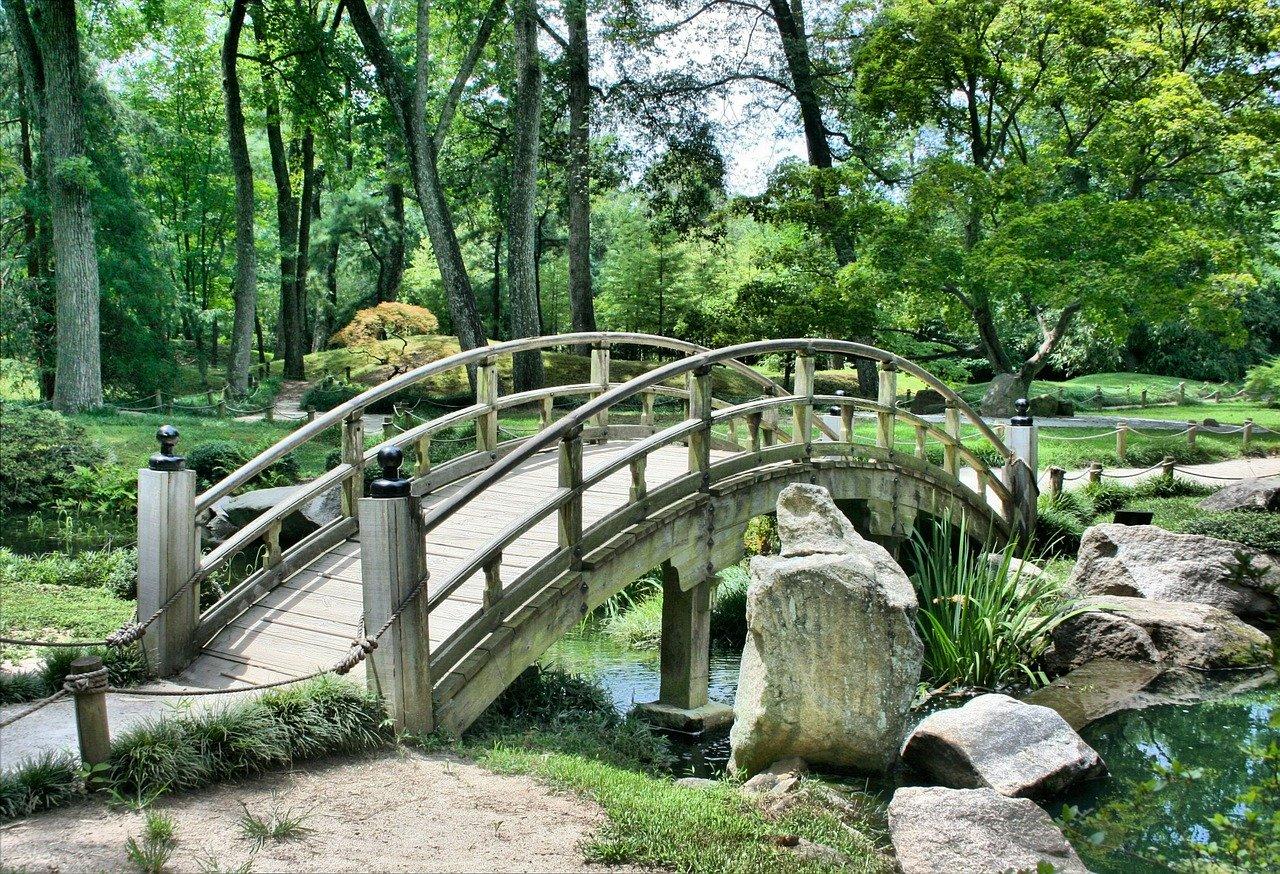 ponte di legno in parco pubblico