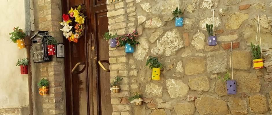muro con vasetti colorati di piantine