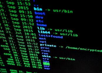 Opportunità lavorative qualificate in ambito informatico