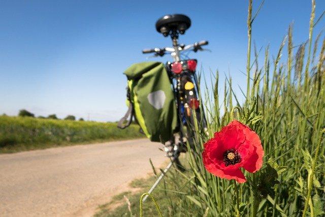 bicicletta al bordo di un campo con papavero