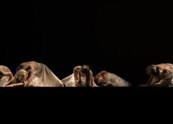 Opportunità lavorative al Teatro Idra: vari profili