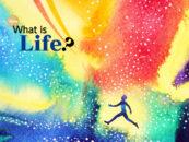 Scrivi un saggio sulla vita per uno sviluppo sostenibile