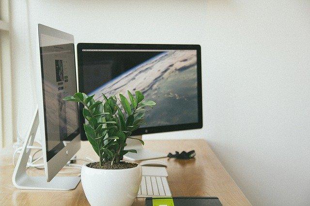 scrivania con computer, agenda, pianta