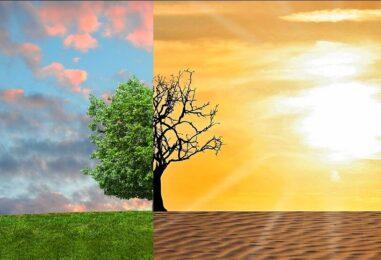 Scambio giovanile in Francia su sostenibilità e clima