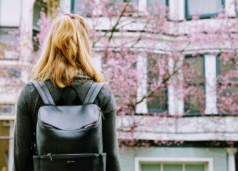 Rafforziamo lo Stato: tirocini per studenti universitari