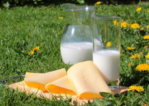 Corso gratuito IFTS Tecnico della produzione e trasformazione di prodotti lattiero-caseari (certificati e non) del territorio lombardo