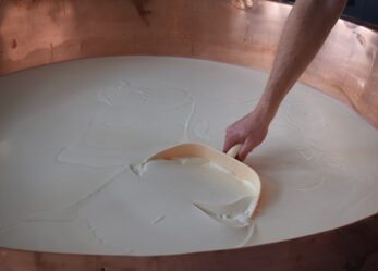 Corso gratuito per addetto alla trasformazione del latte